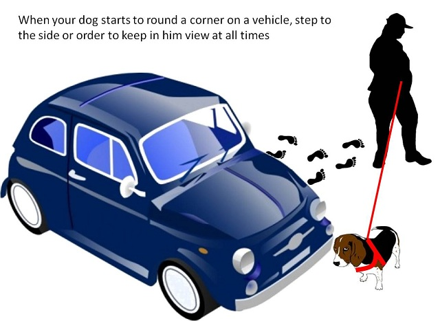 vehicle-leash-handling